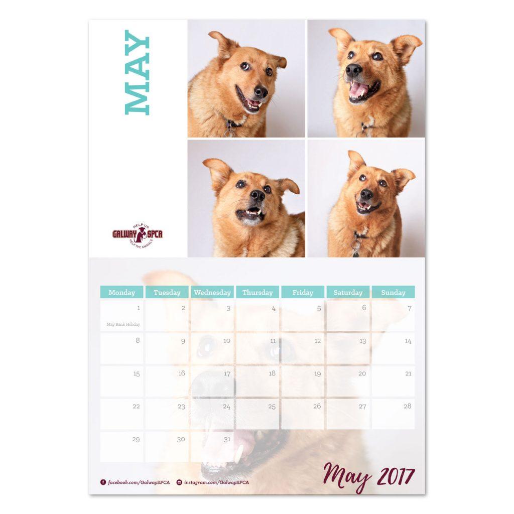 gspca-calendar1
