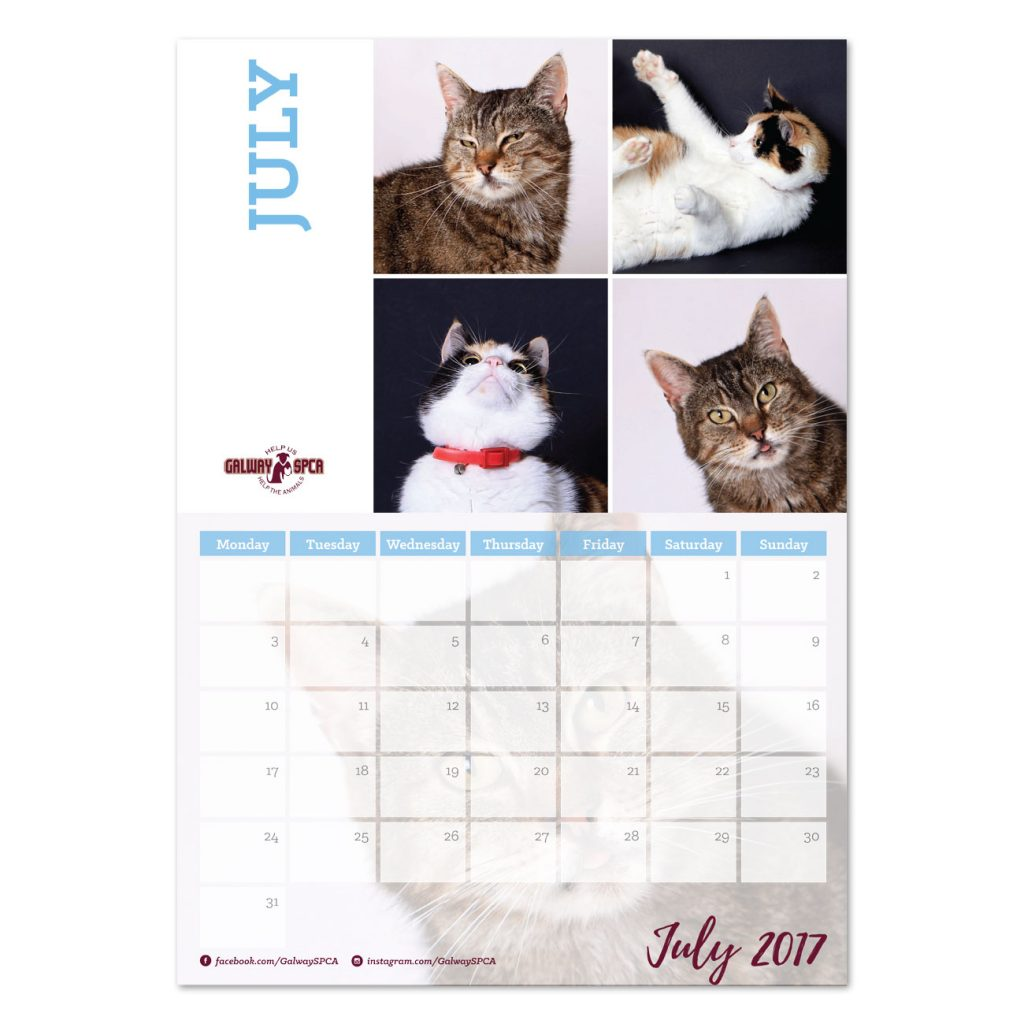 gspca-calendar2