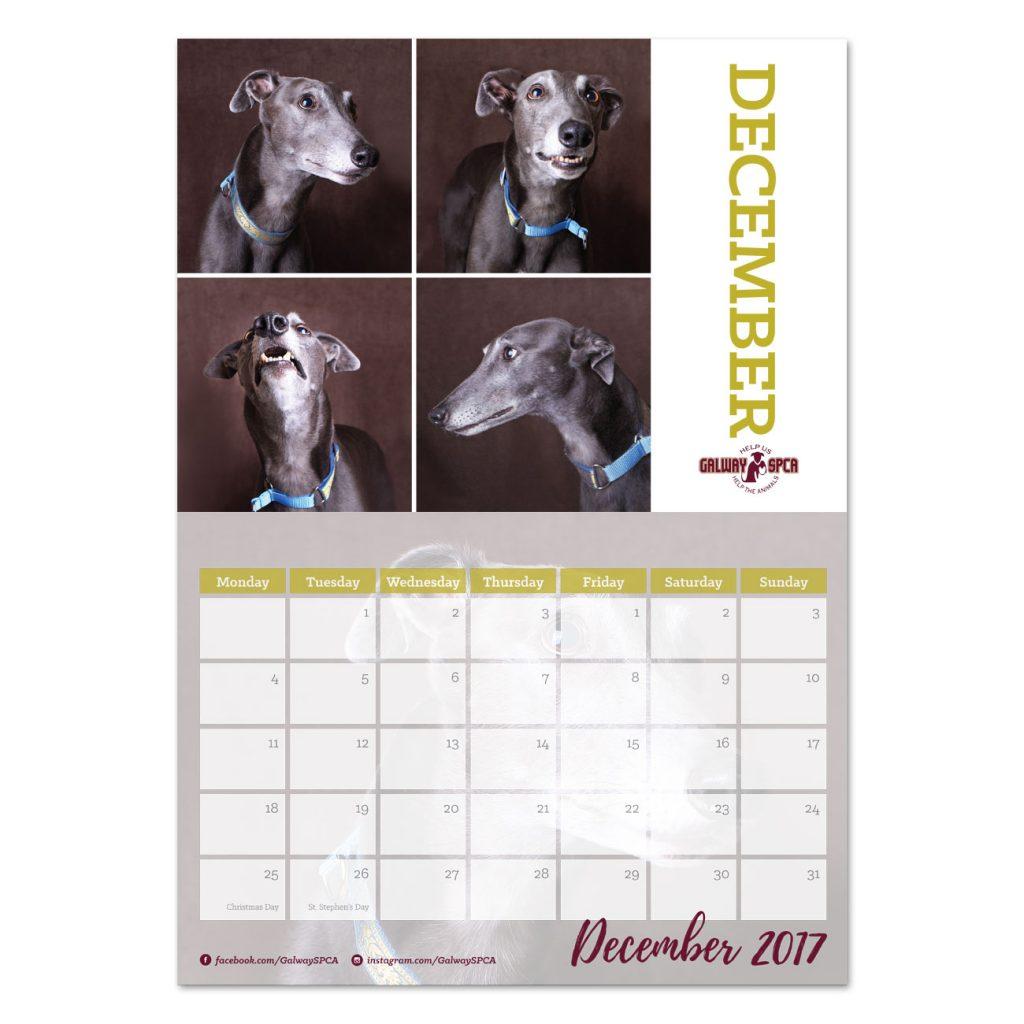 gspca-calendar4
