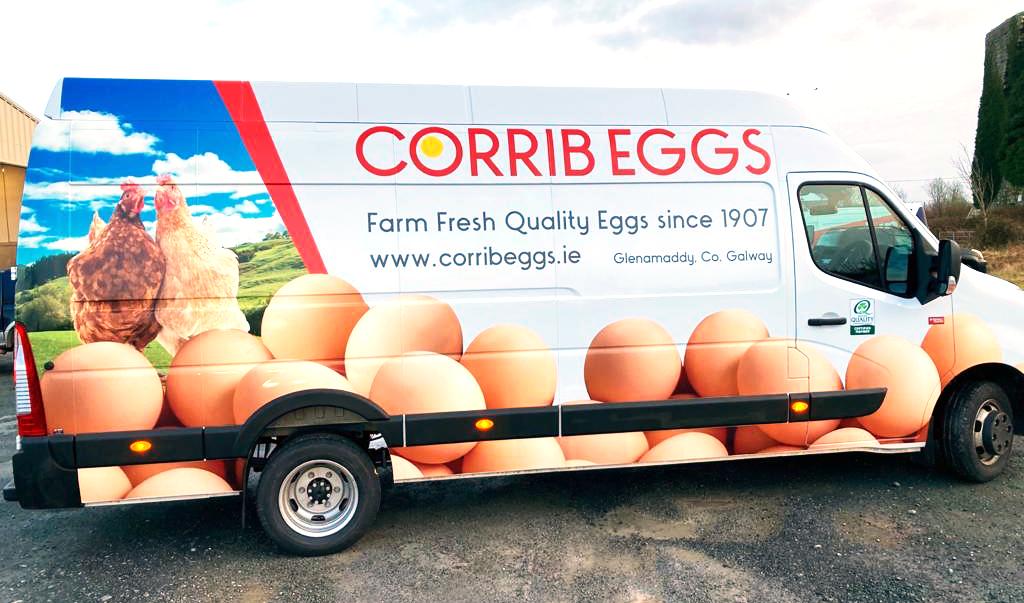 corrib eggs van artwork